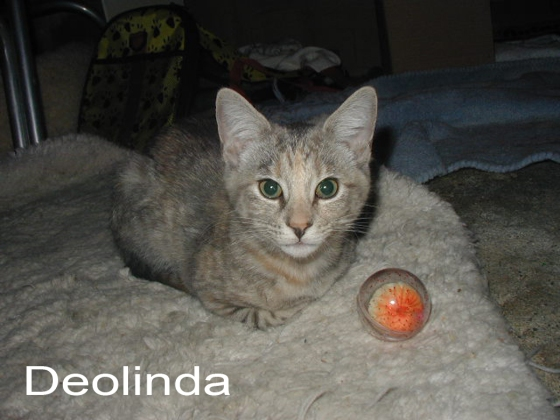 Deolinda the day before her adoption